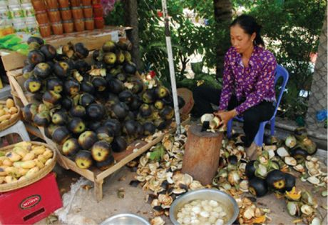 Nghe lam duong thot not cua dong bao Khmer - Anh 6