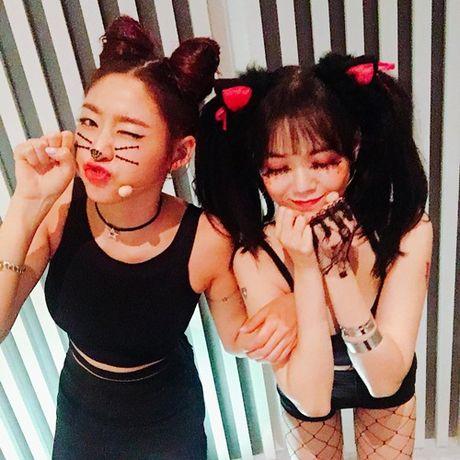 Sao Han 29/10: Seol Hyun hoa meo de thuong, Jessica di shopping sang chanh - Anh 2