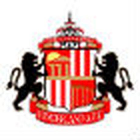 Chi tiet Sunderland - Arsenal: Chu nha vo tran (KT) - Anh 1