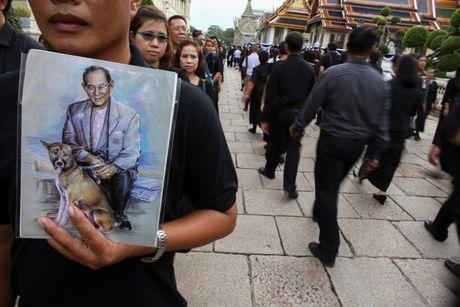 Hang chuc nghin nguoi Thai do ve hoang cung vieng linh cuu nha vua - Anh 7