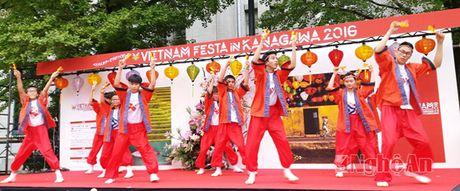 Nghe An tham gia Le hoi Van hoa Viet Nam tai Nhat Ban - Anh 1