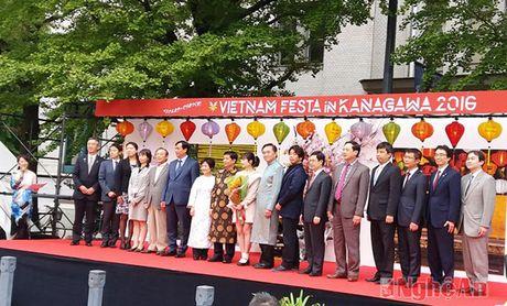 Nghe An tham gia Le hoi Van hoa Viet Nam tai Nhat Ban - Anh 6