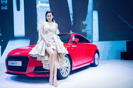 Dan dai su thuong hieu hung hau cua Audi Viet Nam - Anh 12
