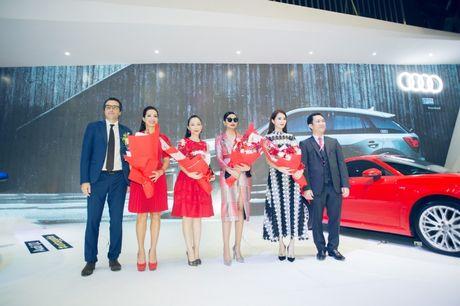 Dan dai su thuong hieu hung hau cua Audi Viet Nam - Anh 1