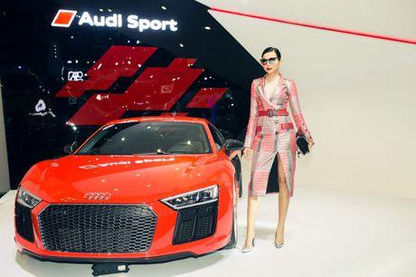 Dan dai su thuong hieu hung hau cua Audi Viet Nam - Anh 2