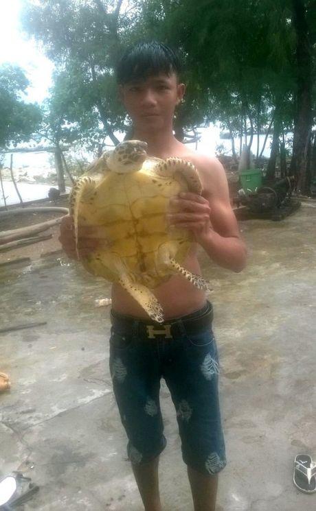 Thua Thien Hue: Doi moi va Vich quy hiem boi lac vao dam pha Hue - Anh 3