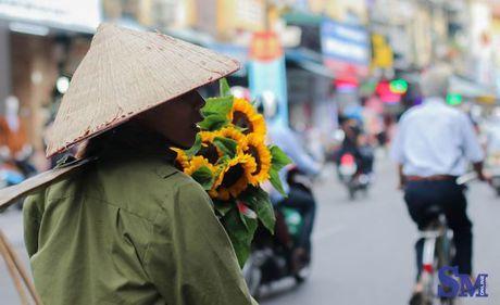 Thu nong nan tren nhung ganh hoa - Anh 10