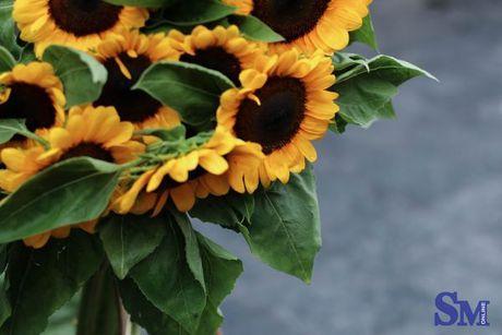 Thu nong nan tren nhung ganh hoa - Anh 11