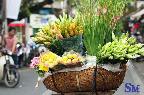 Thu nong nan tren nhung ganh hoa - Anh 2