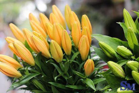 Thu nong nan tren nhung ganh hoa - Anh 3