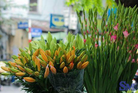 Thu nong nan tren nhung ganh hoa - Anh 4