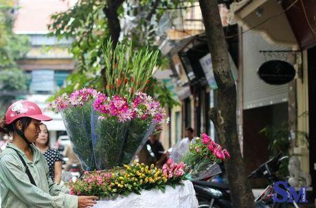 Thu nong nan tren nhung ganh hoa - Anh 6