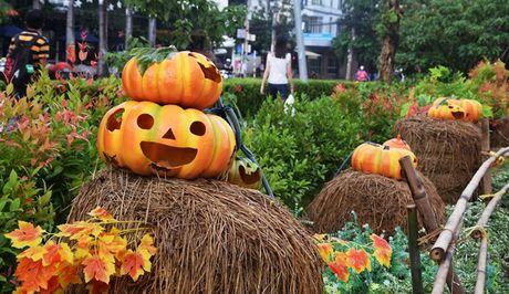 Vuon bi ngo hut khach dip Halloween o Sai Gon - Anh 2