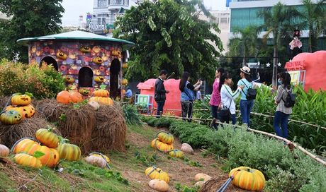 Vuon bi ngo hut khach dip Halloween o Sai Gon - Anh 4