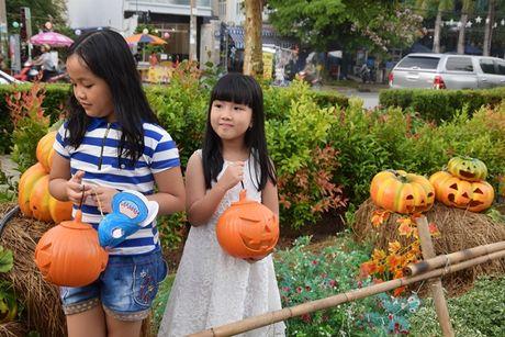 Vuon bi ngo hut khach dip Halloween o Sai Gon - Anh 5