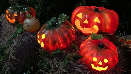 Vuon bi ngo hut khach dip Halloween o Sai Gon - Anh 6