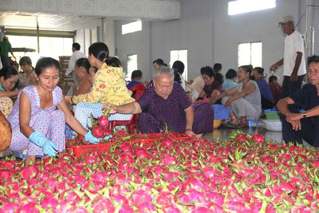 Huyen trieu phu Thanh Long - Anh 1