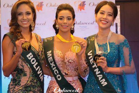 Nam Em chia se ve su co phien dich sau dem chung ket Miss Earth 2016 - Anh 1