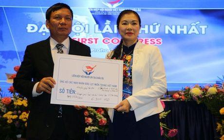 Thanh lap Lien hiep Hoi nguoi Viet Nam tai chau Au - Anh 3