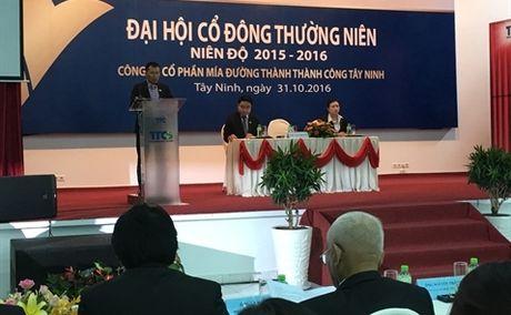 Mia duong Thanh Thanh Cong muon M&A de 'don bao hoi nhap' - Anh 1