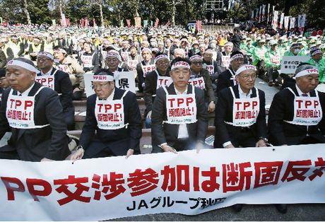 Thoi gian khong ung ho TPP - Anh 1