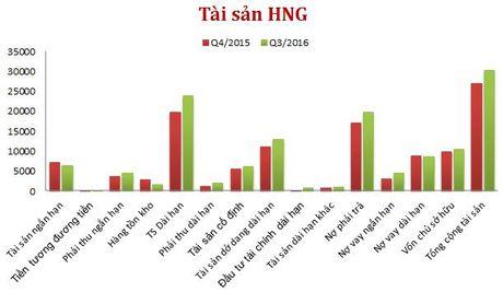 HAGL Agrico: Lo 643 ty 9 thang, tai san do dang dai han chiem 43% tong tai san - Anh 2