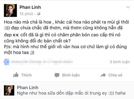 Da xeo nhau tren Facebook - gioi mau Viet khong phang lang - Anh 3