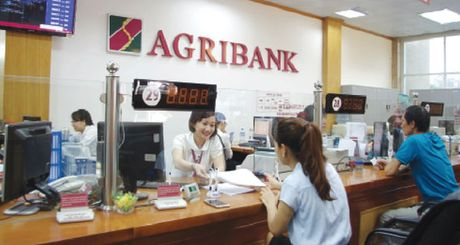 Agribank tiep suc phat trien nen nong nghiep an toan, ben vung - Anh 2