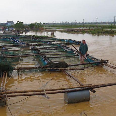 Quang Binh: Lu tro lai, doan cuu tro mac ket - Anh 6