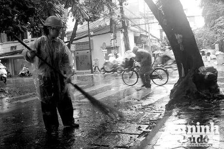 Hinh anh nguoi Ha Noi nhieu cam xuc don mua lanh dau Dong - Anh 7