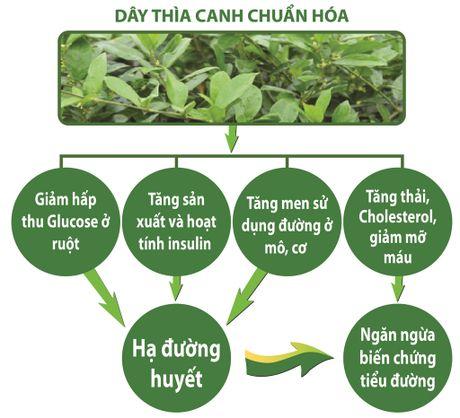3 nguoi tieu duong – 1 nguoi mo mat: Cho coi thuong! - Anh 3