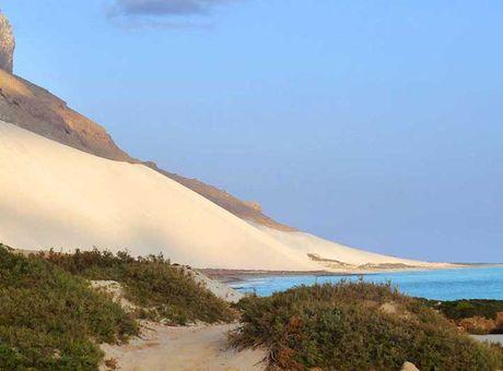 Kham pha Socotra - Hon dao duoc vi nhu hanh tinh khac tren trai dat - Anh 16