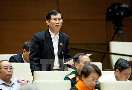 Dai bieu Quoc hoi: Can xu ly nghiem sai pham trong dau tu cong - Anh 1