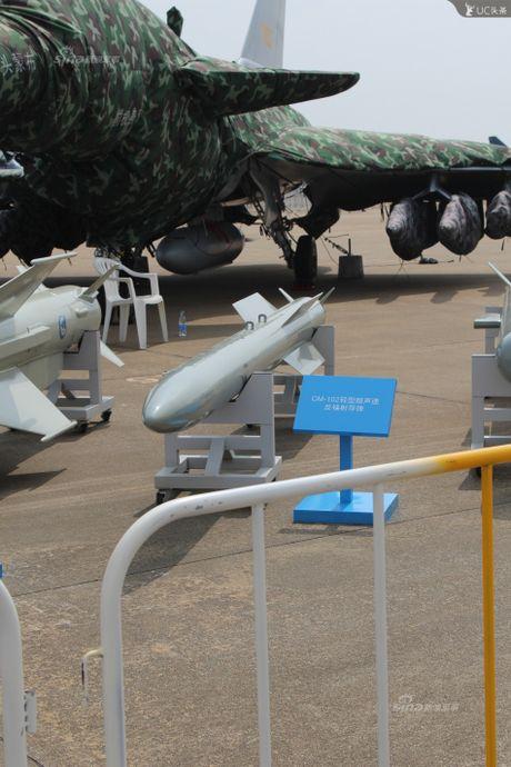 Trung Quoc lo kho vu khi 'khung' tren tiem kich J-10B - Anh 8
