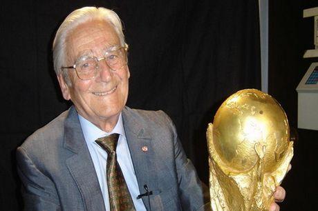 Cha de cup vang FIFA qua doi - Anh 1