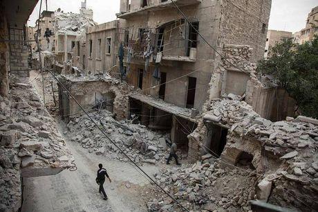 Nga cong bo Sach trang ve Syria tai Lien Hop Quoc - Anh 2