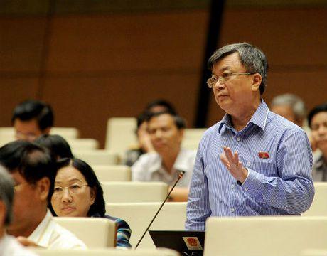 Dai bieu Quoc hoi: Can xu nghiem vu 'mot so bien che 2 nhan vien, 44 lanh dao' - Anh 1