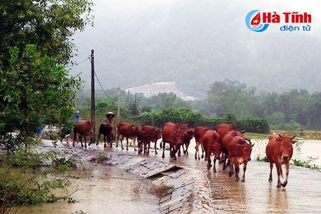 Vu Quang 'chay' lu, Huong Son de phong xa tran thuy dien - Anh 4