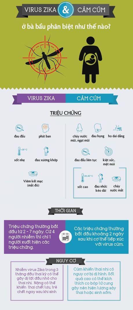 Nhiem virus Zika: Can than khong nham lan voi cum - Anh 2
