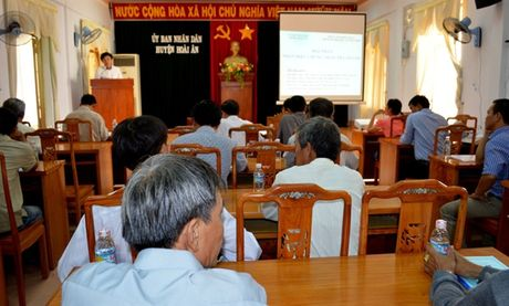 Binh Dinh: To chuc Hoi thao chung nhan nhan hieu tra Go Loi - Anh 1
