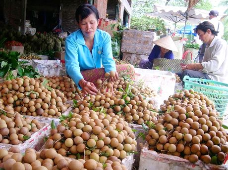 Nong nghiep Dong Thap tang truong dan dau DBSCL - Anh 1