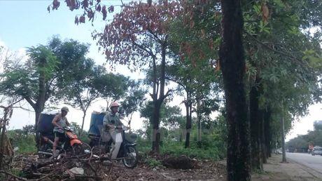 Thong tin tiep theo ve dien bien vu ca chet o ho Linh Dam - Anh 3