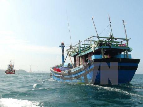 Quang Tri khan truong tiep can cuu nan tau bi nan tren bien - Anh 1