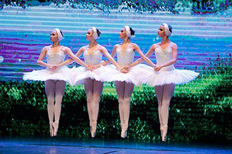 Hai vo ballet noi tieng the gioi den Viet Nam vao dau thang 12 - Anh 2