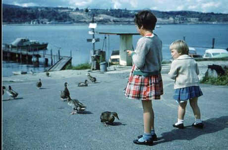 Kham pha cuoc song thuong nhat o Canada nhung nam 1960 - Anh 6
