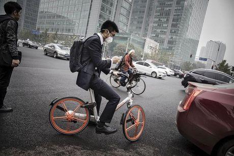 "Dich vu ""Uber"" xe dap no ro o Trung Quoc - Anh 2"