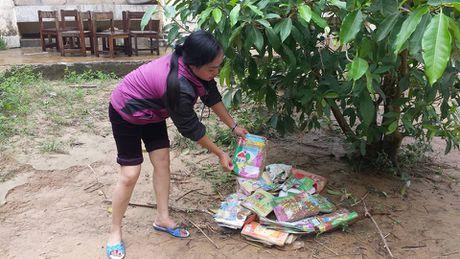 Nguoi dan mien Trung gong minh khac phuc hau qua sau lu lon - Anh 15