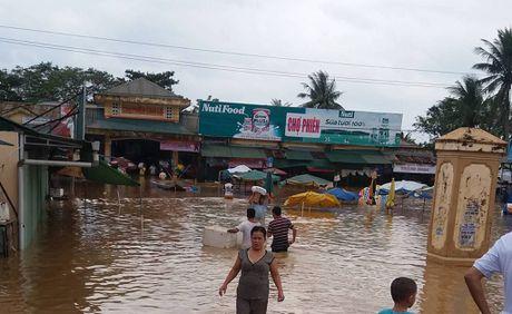 Quang Binh: 6/6 ho chua dang xa lu - Anh 1