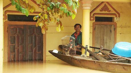 Lu chong lu, nhieu dia phuong o Quang Binh bi chia cat - Anh 2