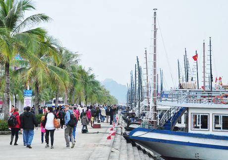 Quang Ninh don 7,3 trieu luot du khach trong 10 thang nam 2016 - Anh 1